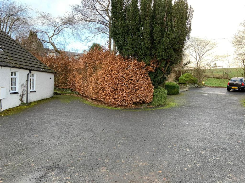 Corshill Cottage and Barn Apartments