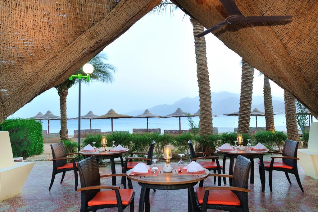 מסעדה או מקום אחר לאכול בו ב-Tirana Dahab Resort