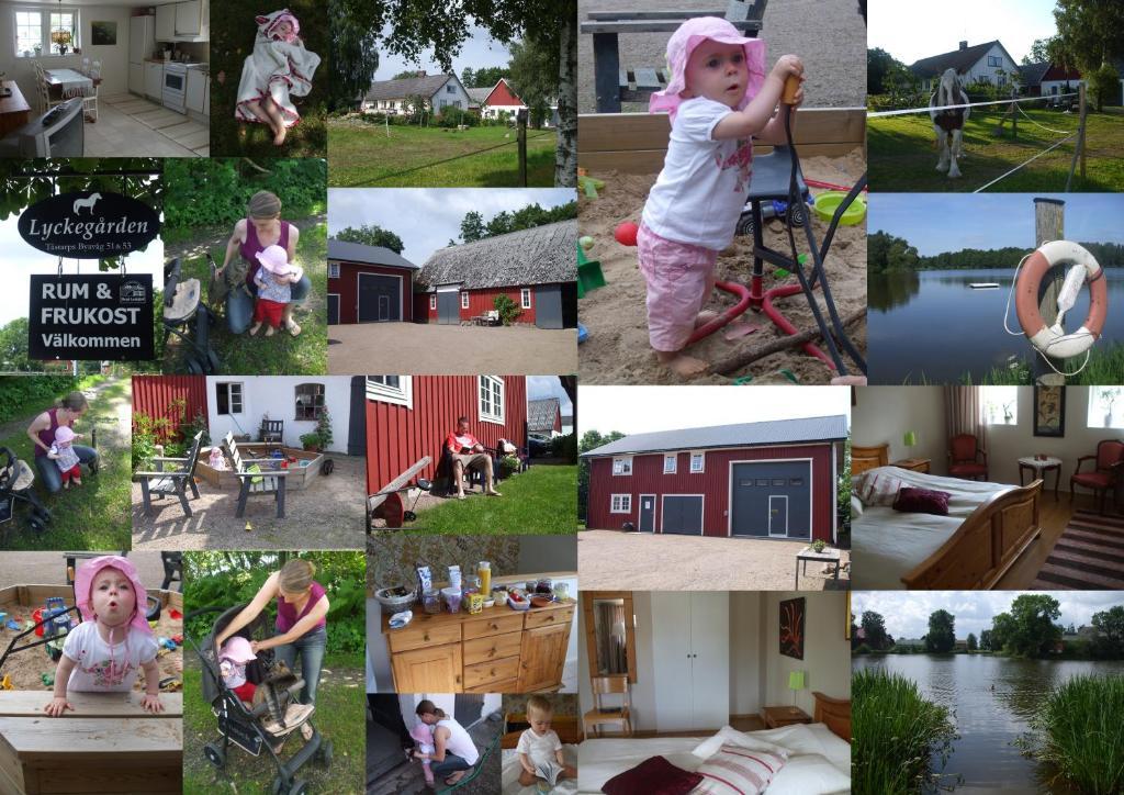 Dejt aktiviteter i munka ljungby - Agriturismo Pingitore