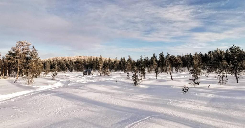 Arctica Lapland Aurorahut Adventure Ivalo Paivitetyt Vuoden