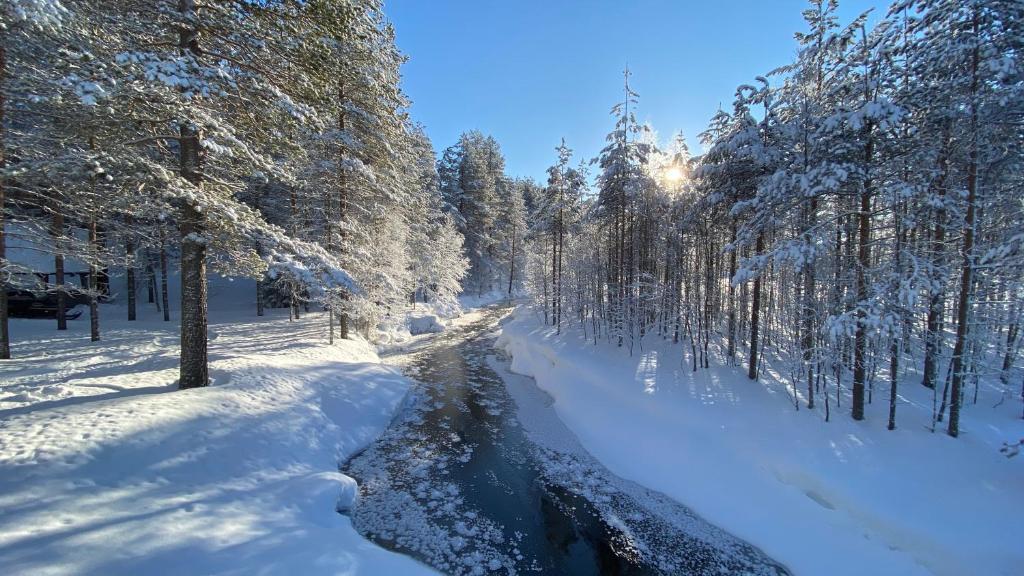 Lapiosalmi Wilderness Resort Posio Paivitetyt Vuoden 2020 Hinnat
