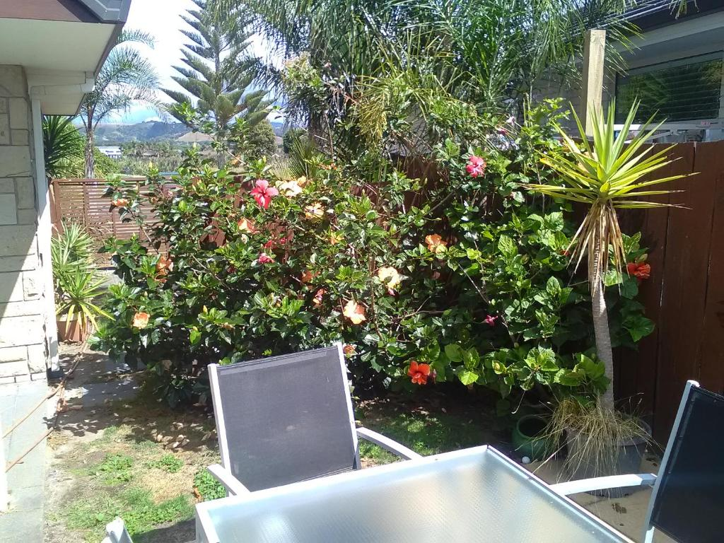 Royal Palms Papamoa Bed & Breakfast