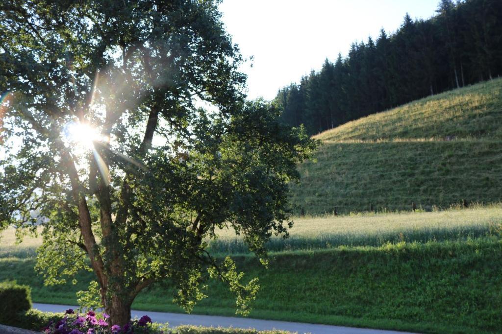 Bekanntschaften in Villach-Sankt Martin - Partnersuche