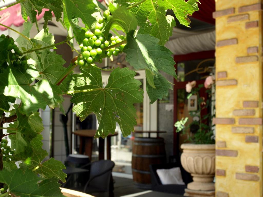 Hotel Ristorante La Terrazza Planegg Germany Booking Com