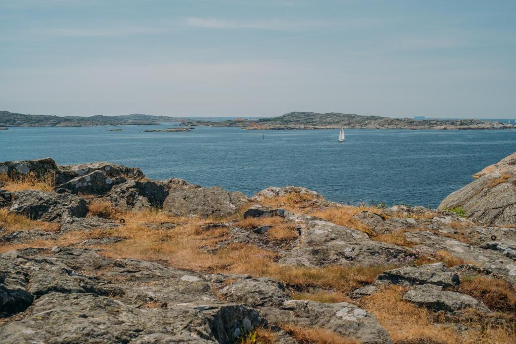 Free Dating Sites In Sweden Domina Eskortcowgirl Marstrand