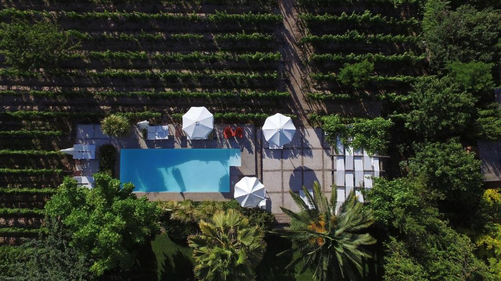A view of the pool at Finca Adalgisa or nearby