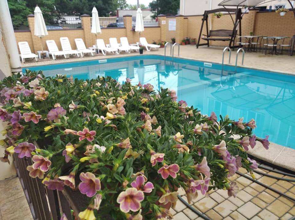 The swimming pool at or near Laguna Hotel
