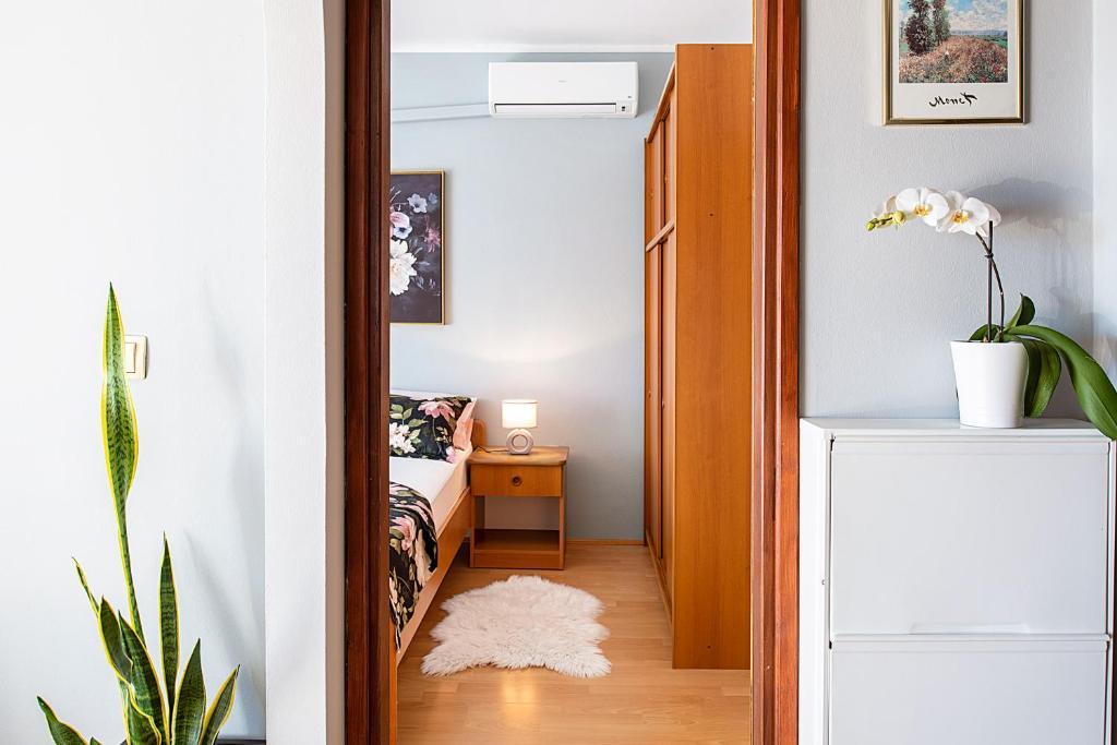 Jimy Apartments