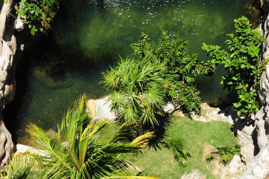 Jardín al aire libre en Hotel Posada Sian Kaan