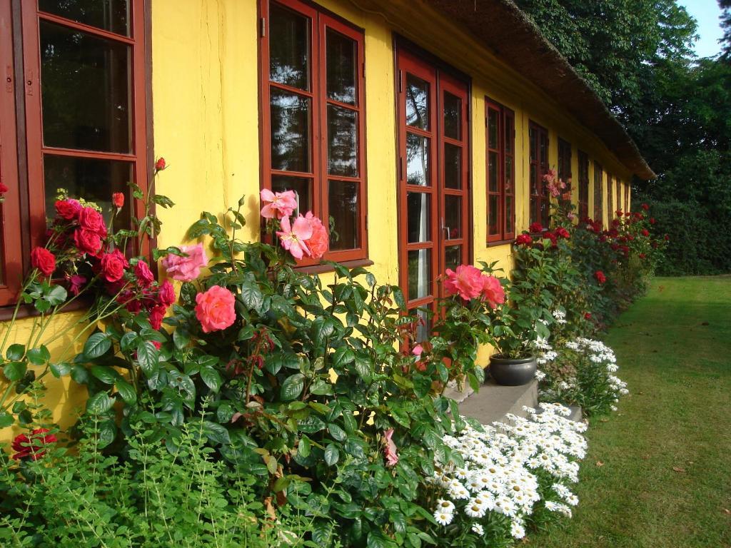 A garden outside Ouregaarden B&B