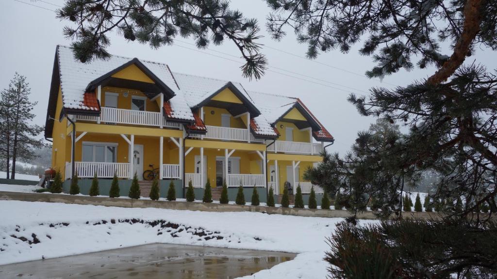 Villa Ducic