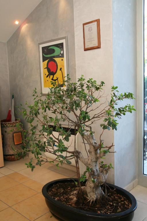 Residence Felicioni