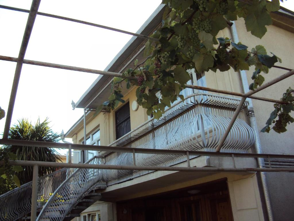 Guest House at Bagrationi Street