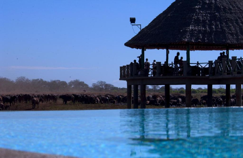 The swimming pool at or near Voi Wildlife Lodge