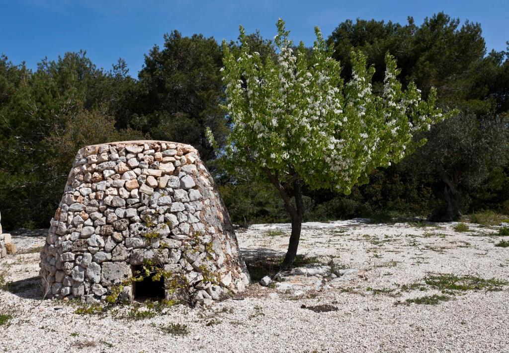 Bilocale Borgo
