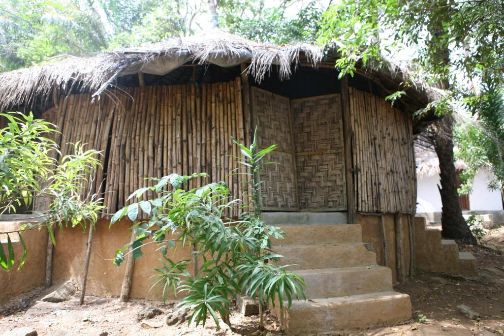 Daltons Banana Guesthouse