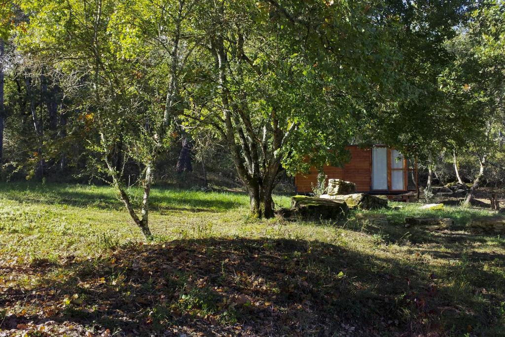 A garden outside Agricampeggio Madonna di Pogi
