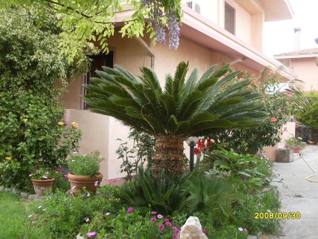 Giardino di Casa Vacanza Su bonu Acatu