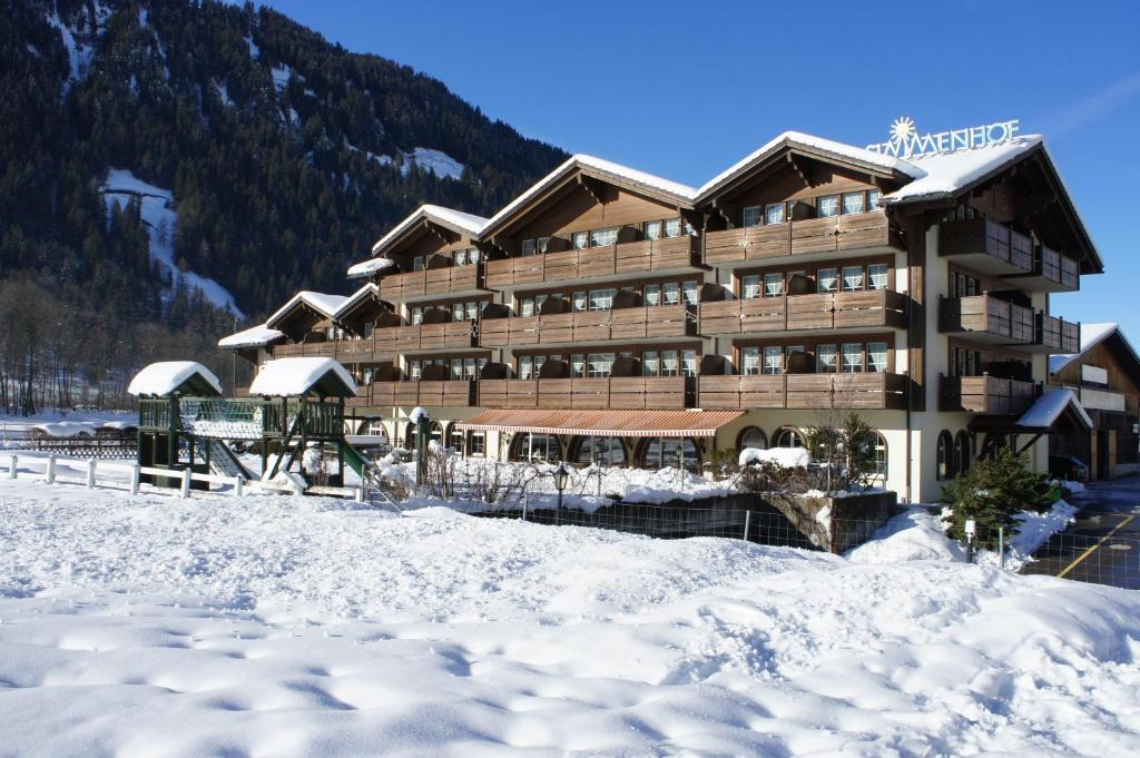 Hotel Simmenhof зимой