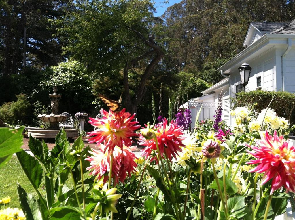 A garden outside Monarch Cove Inn