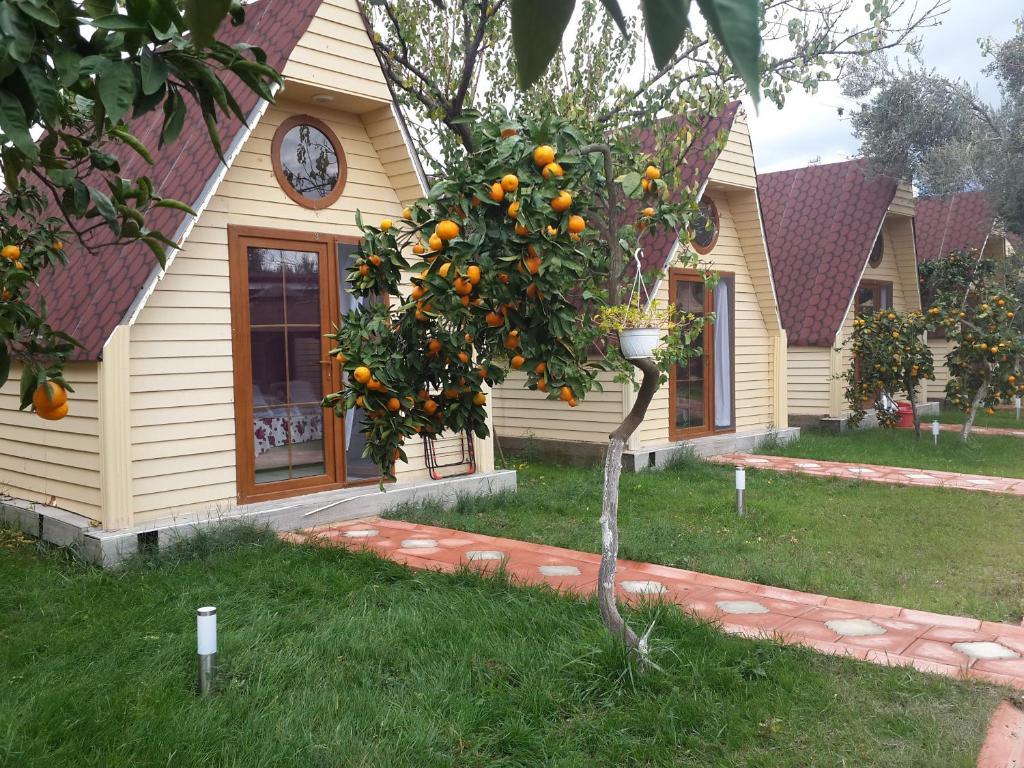 A garden outside Kaz Daglari Idavilla Bungalow Hotel