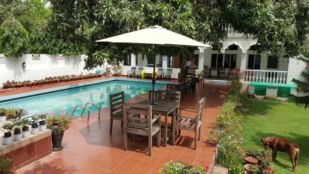 The swimming pool at or near Hotel Gandhara