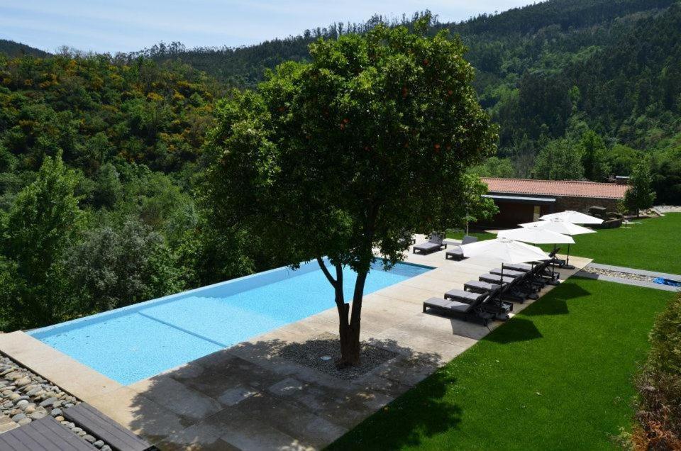 A piscina em ou perto de Rio Moment's