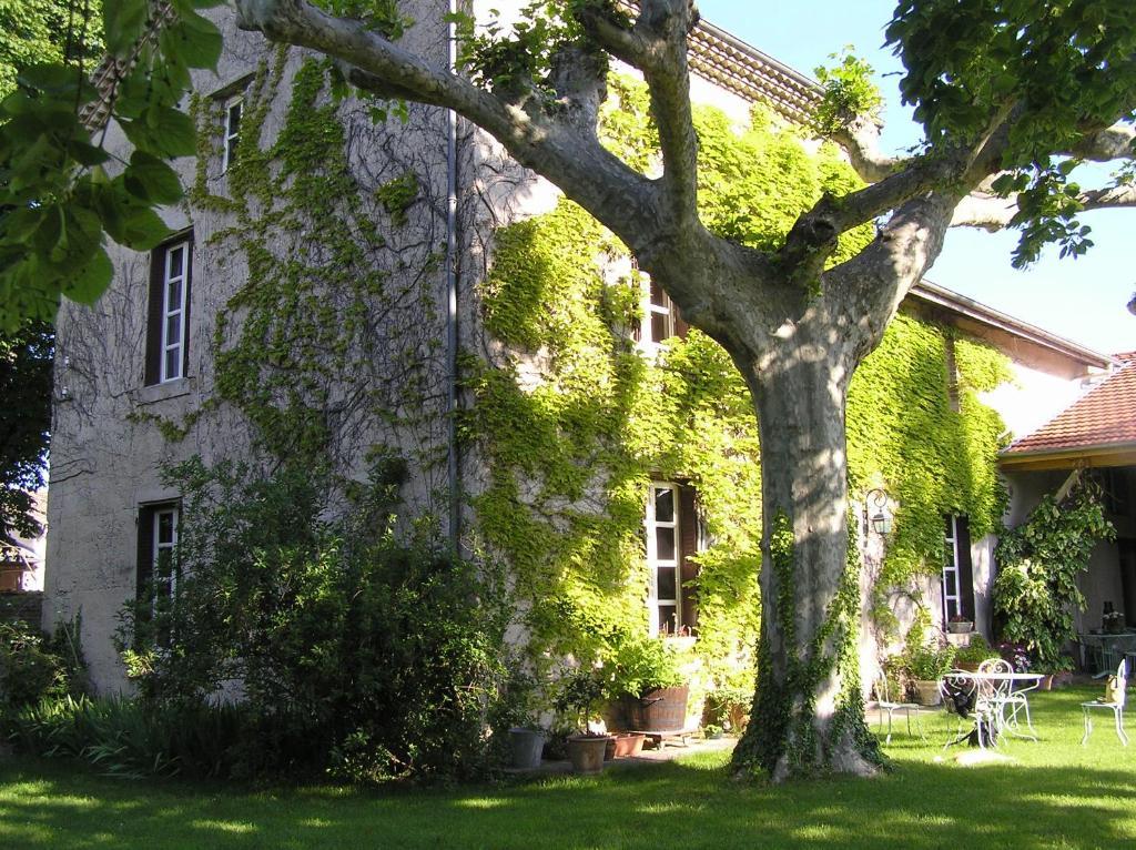 Chambon Domaine De La Source