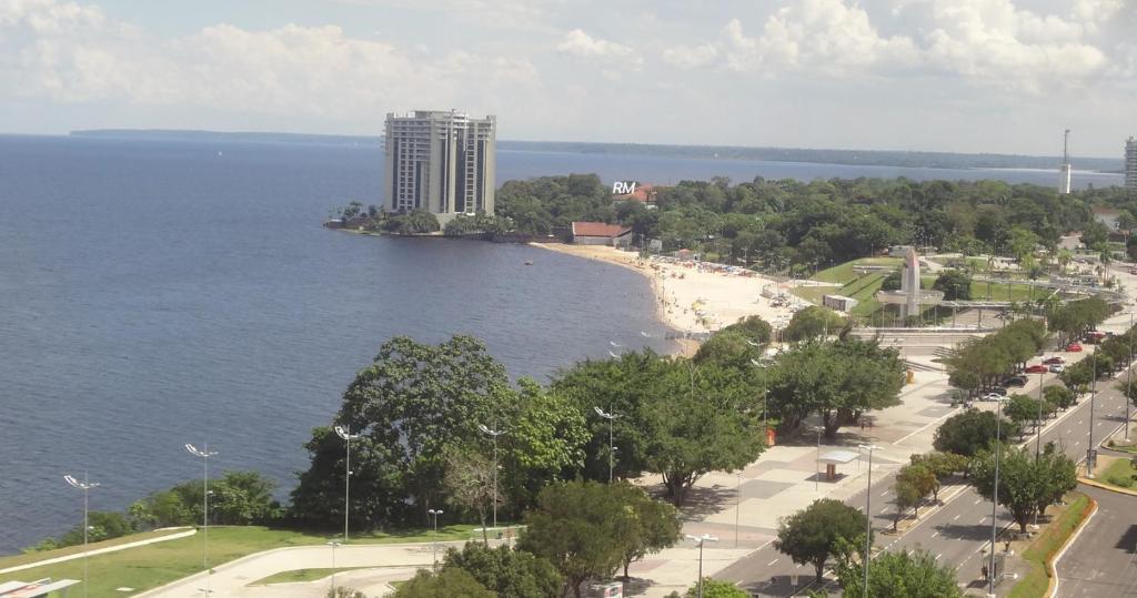 A bird's-eye view of Flat Tropical Business Condo
