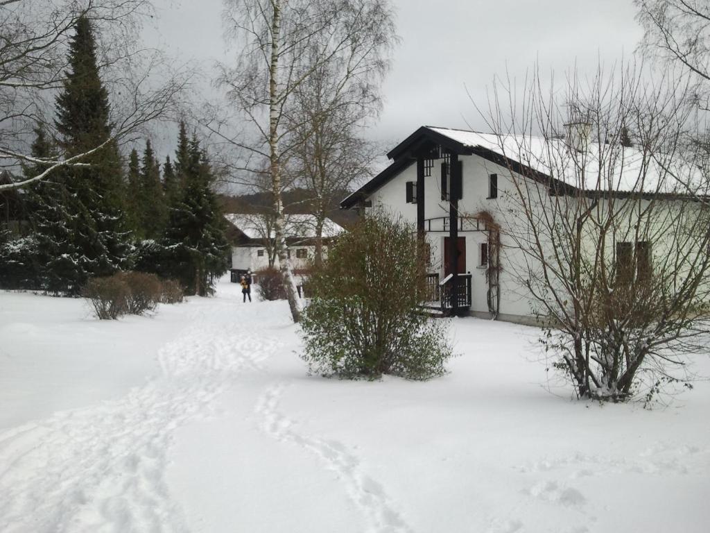 Ferienhaus Bayerischer Wald during the winter
