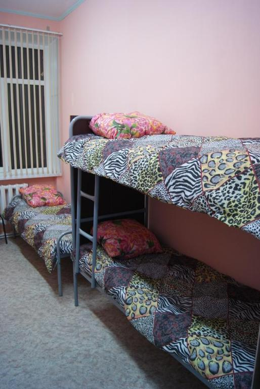 A bunk bed or bunk beds in a room at Hostel Vybor