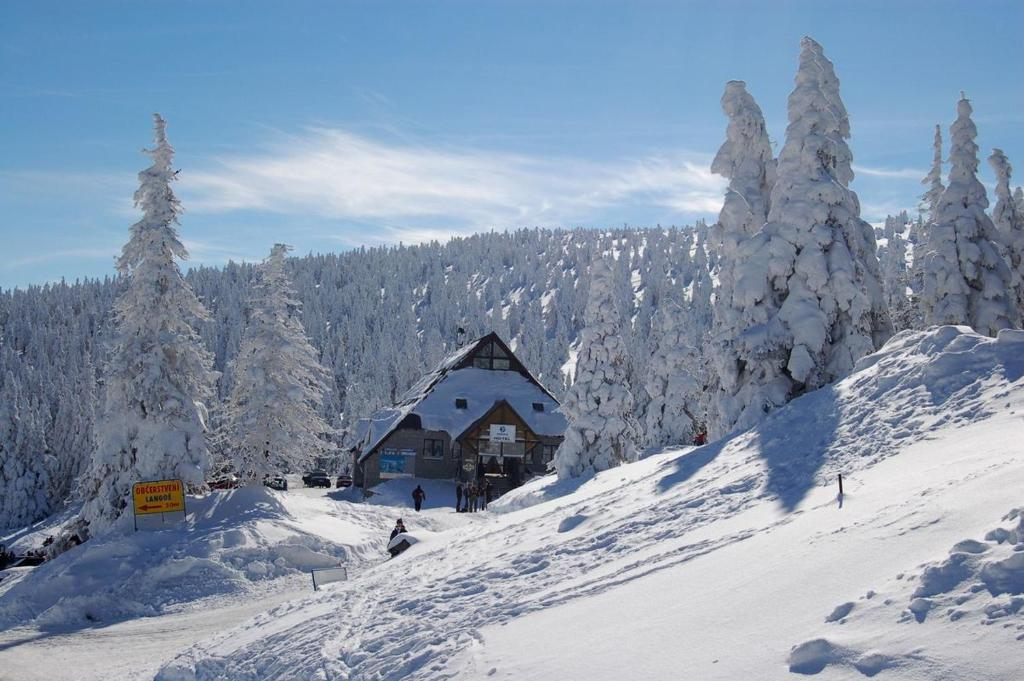 Hotel Figura during the winter