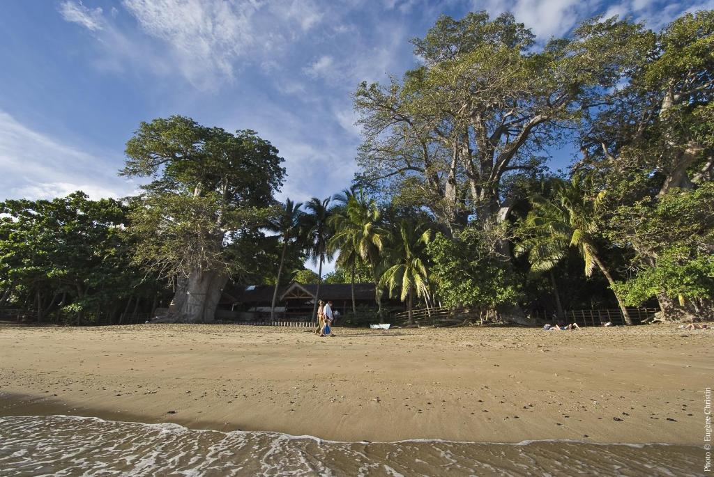 飯店海灘或附近的海灘