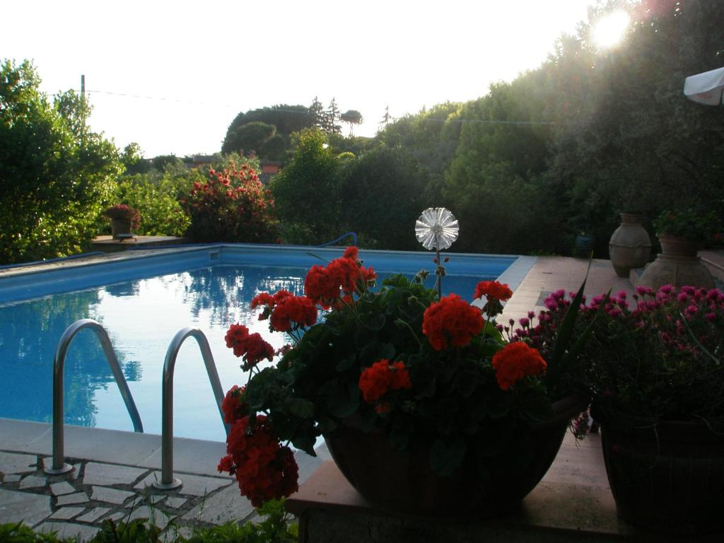 The swimming pool at or near B&B Parco di Veio