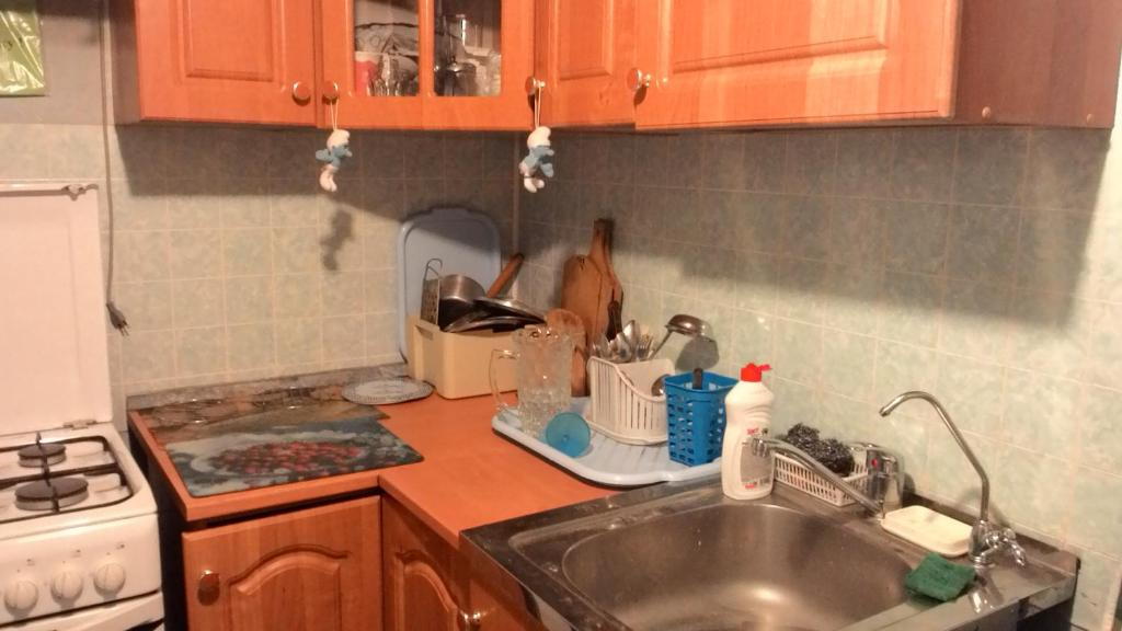 A kitchen or kitchenette at Flat Yugo-Zapad