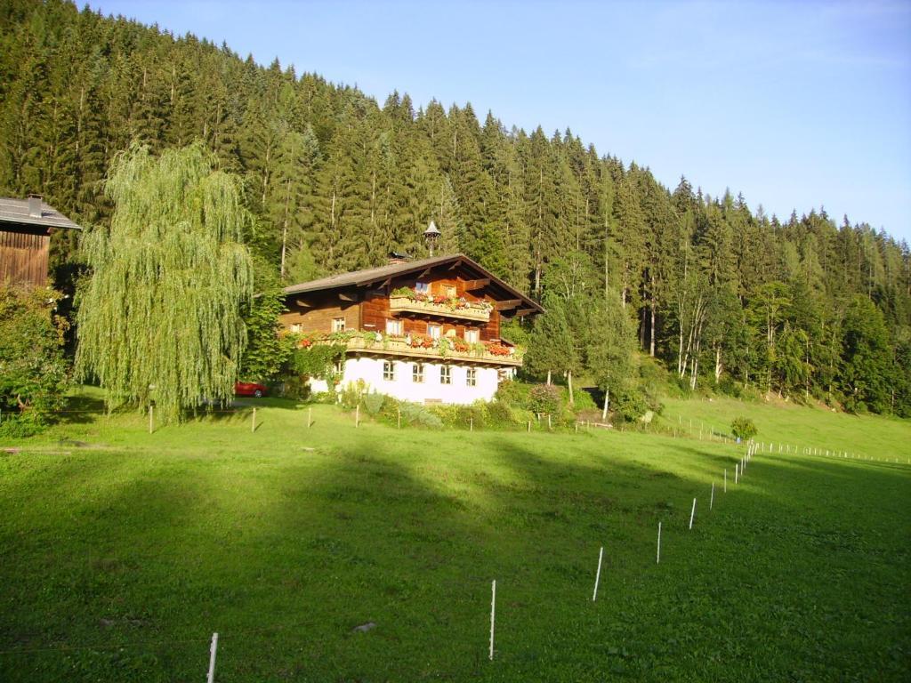 Urlaub zu zweit in Salzburg - Flats for Rent in Pfarrwerfen