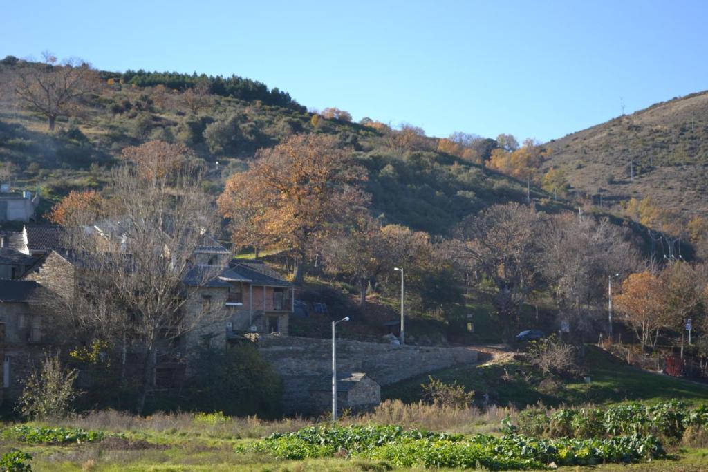 Casa de Onor