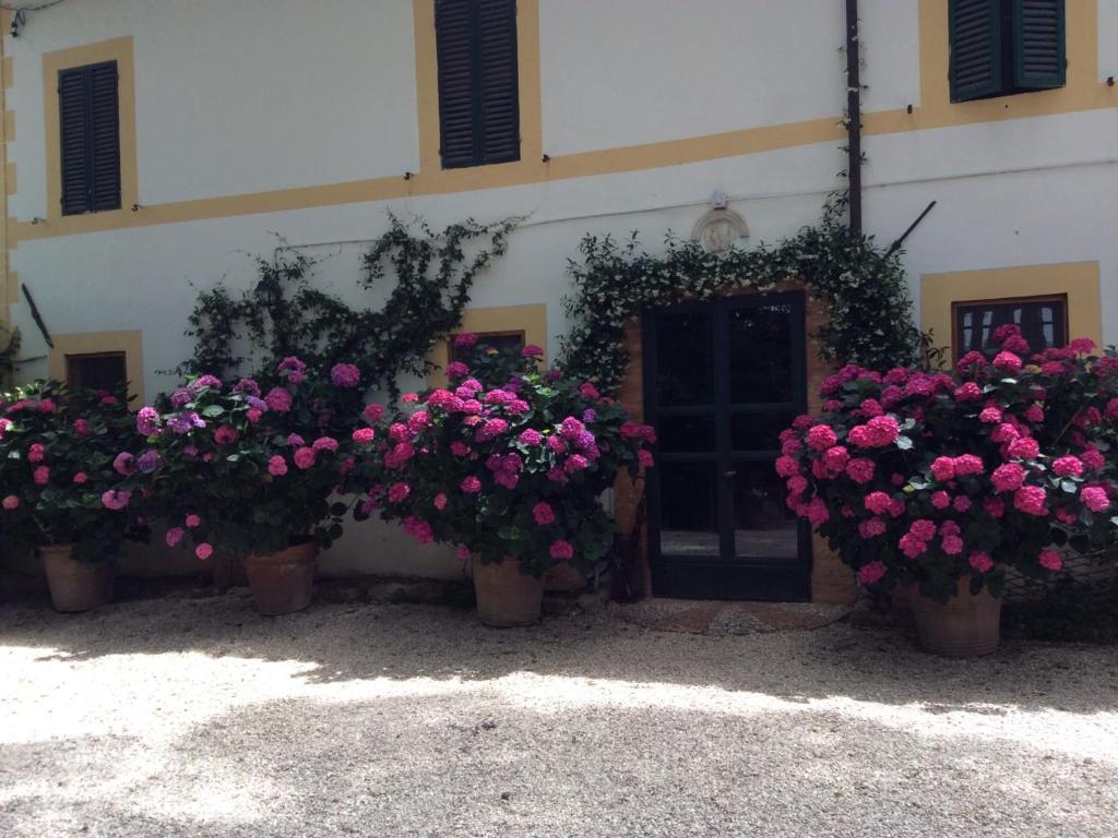Depandance Villa Soda