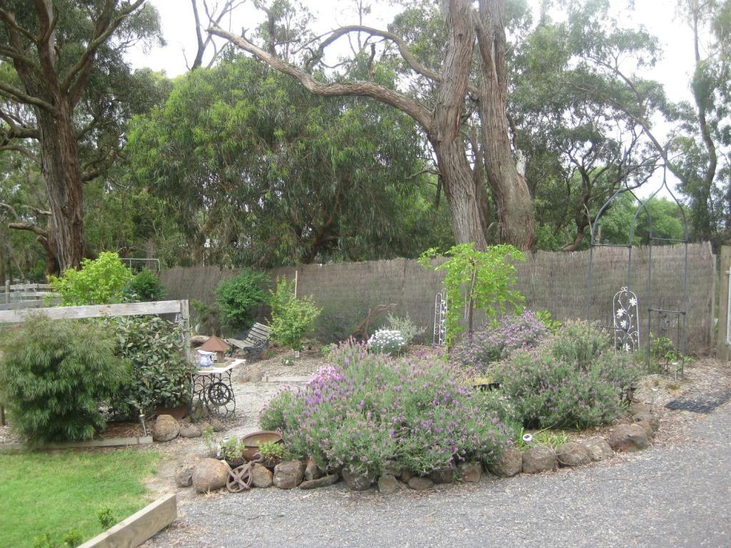 A garden outside Honeyeater Cottage