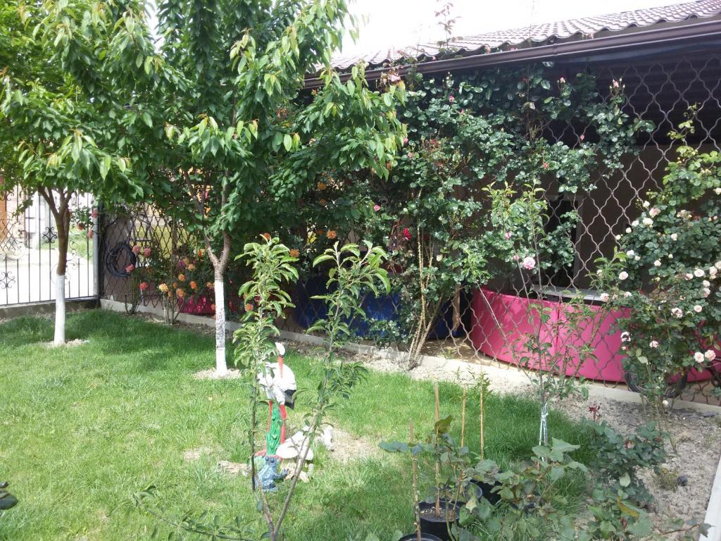 Сад в Радужный Отель