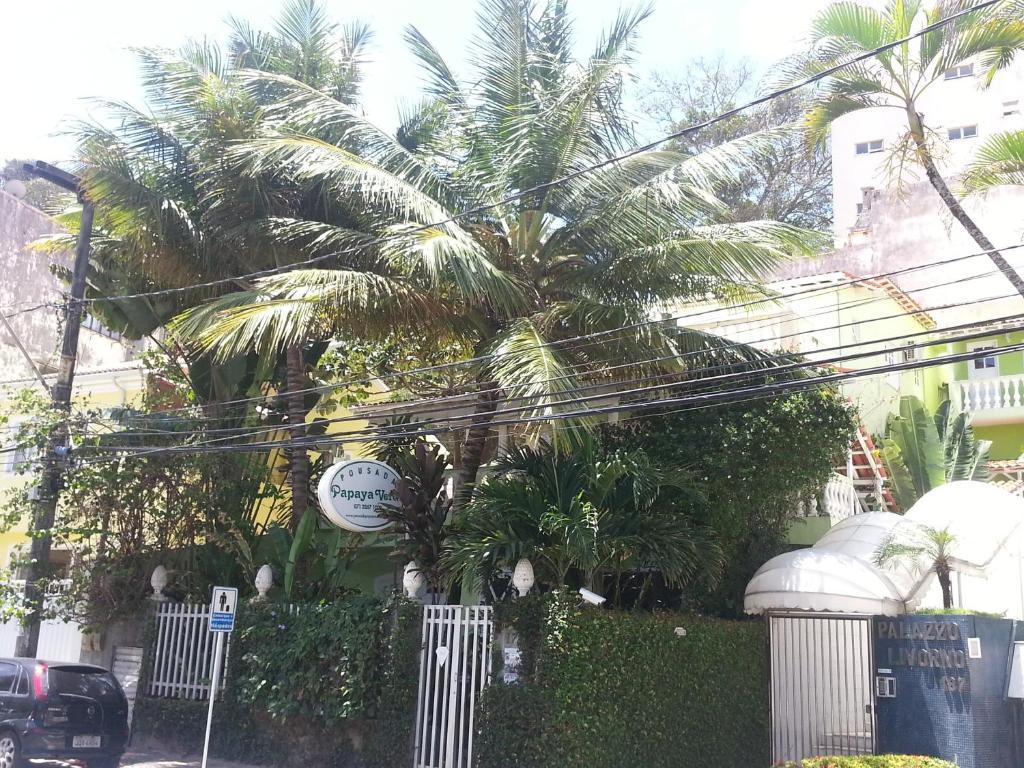 A garden outside Hotel Pousada Papaya Verde