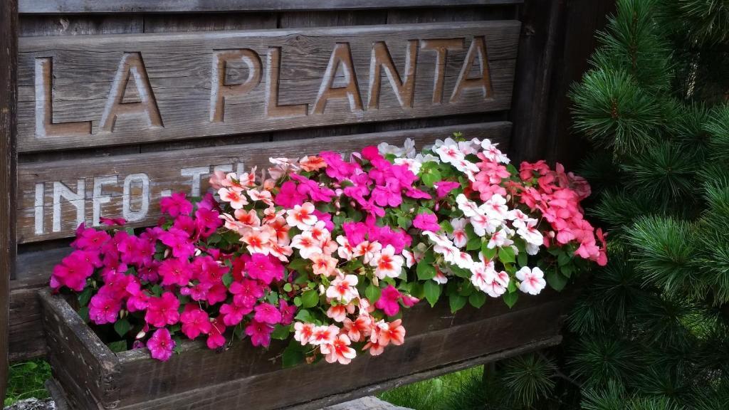 Residence La Planta