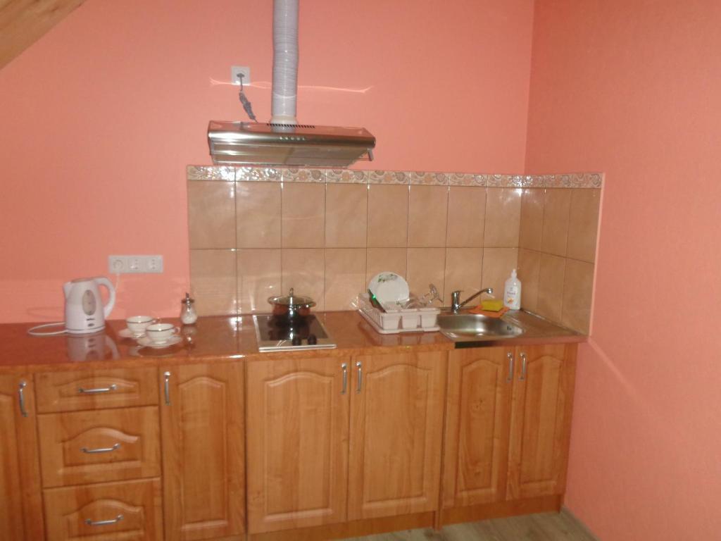 Virtuve vai virtuves aprīkojums naktsmītnē Brīvdienu māja Audas