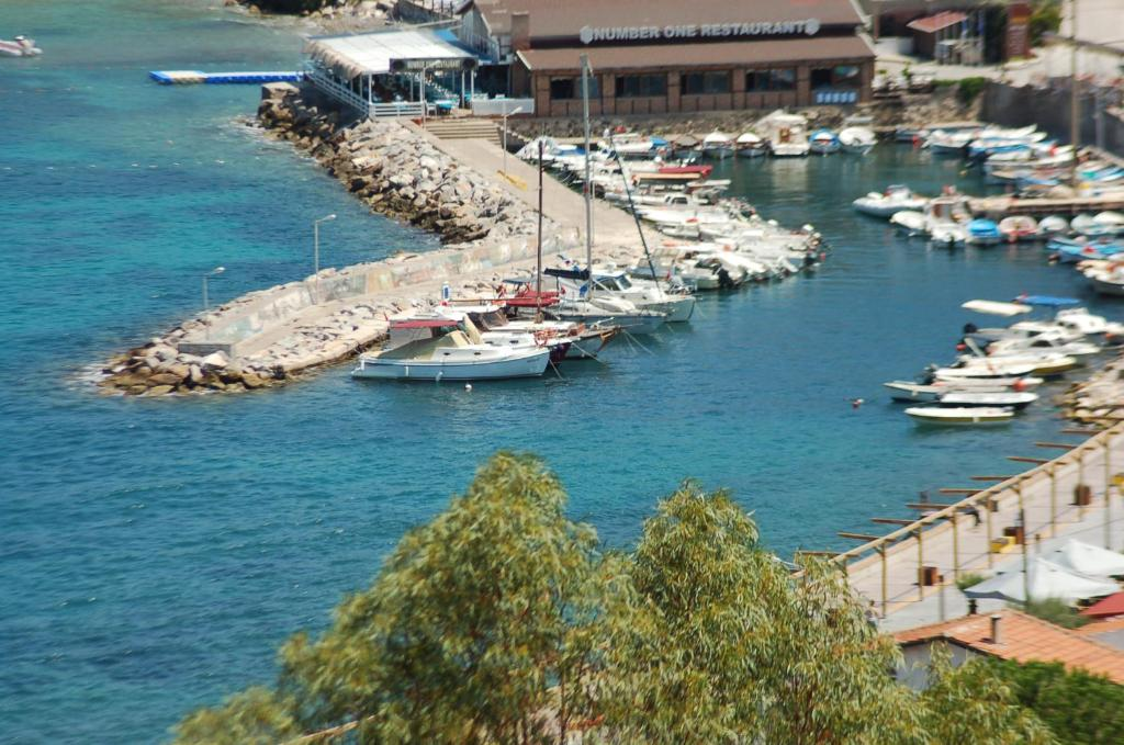 Seaview Apartment Karaburun Turkei Karaburun Booking Com