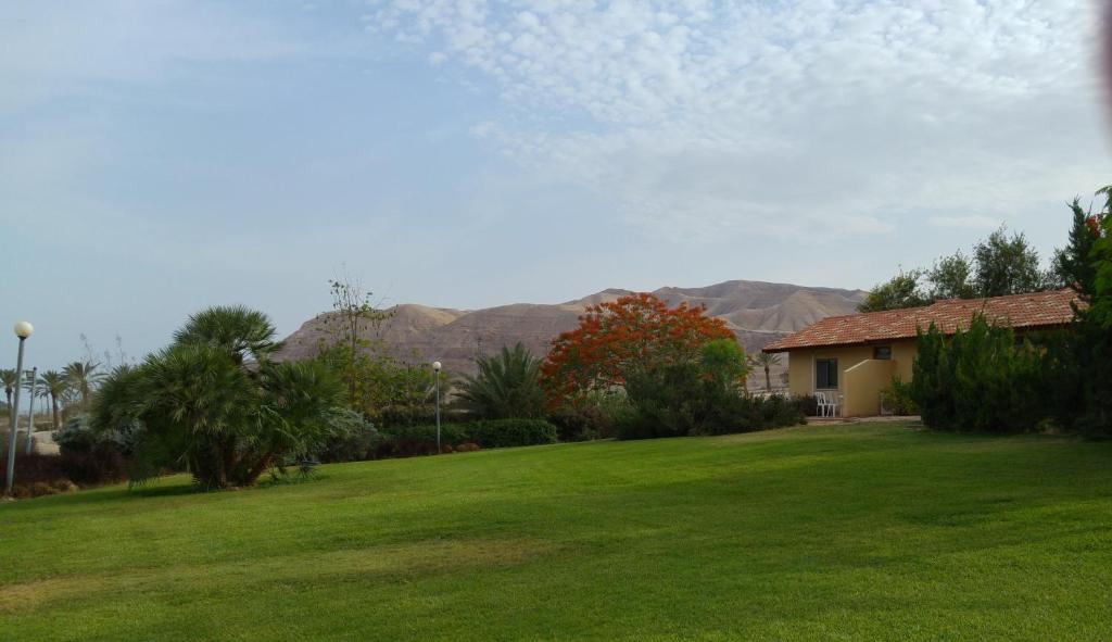 A garden outside Almog Kibbutz Hotel