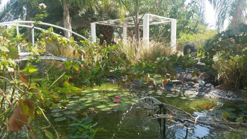 A garden outside Kmo Yam In The Love Garden