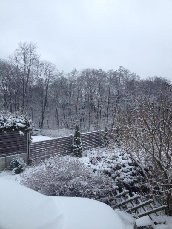 Ratshof Villa зимой