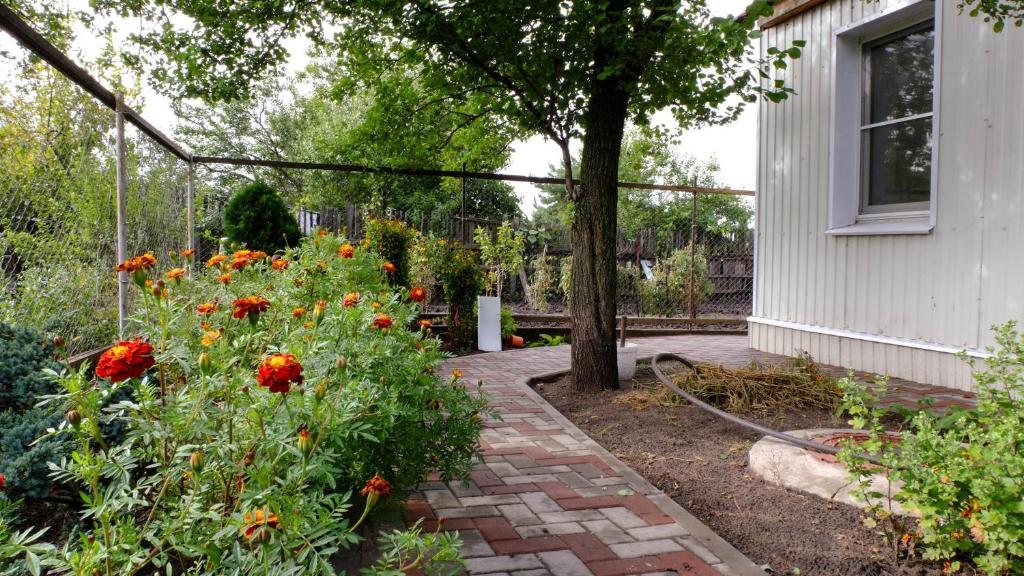 Сад в Hostel Voronezh