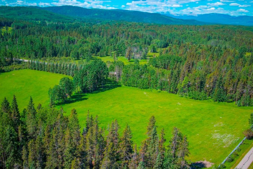 Folk Tree Lodge