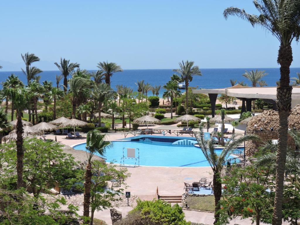 בריכת השחייה שנמצאת ב-Coral Resort Nuweiba או באזור